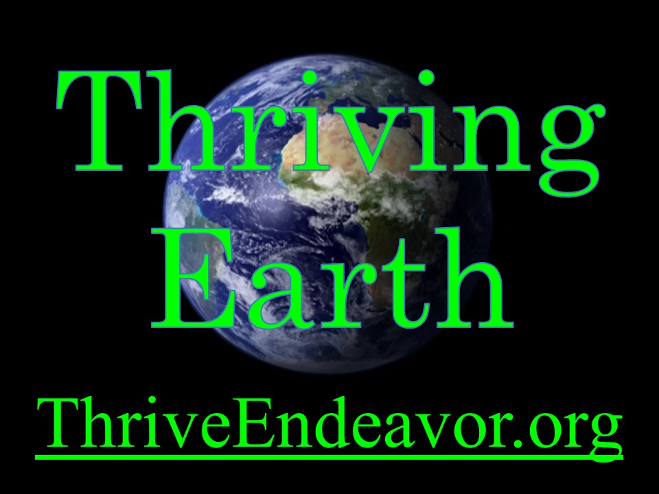Thrive or Not - video - 3 - 1m blk Title 040220